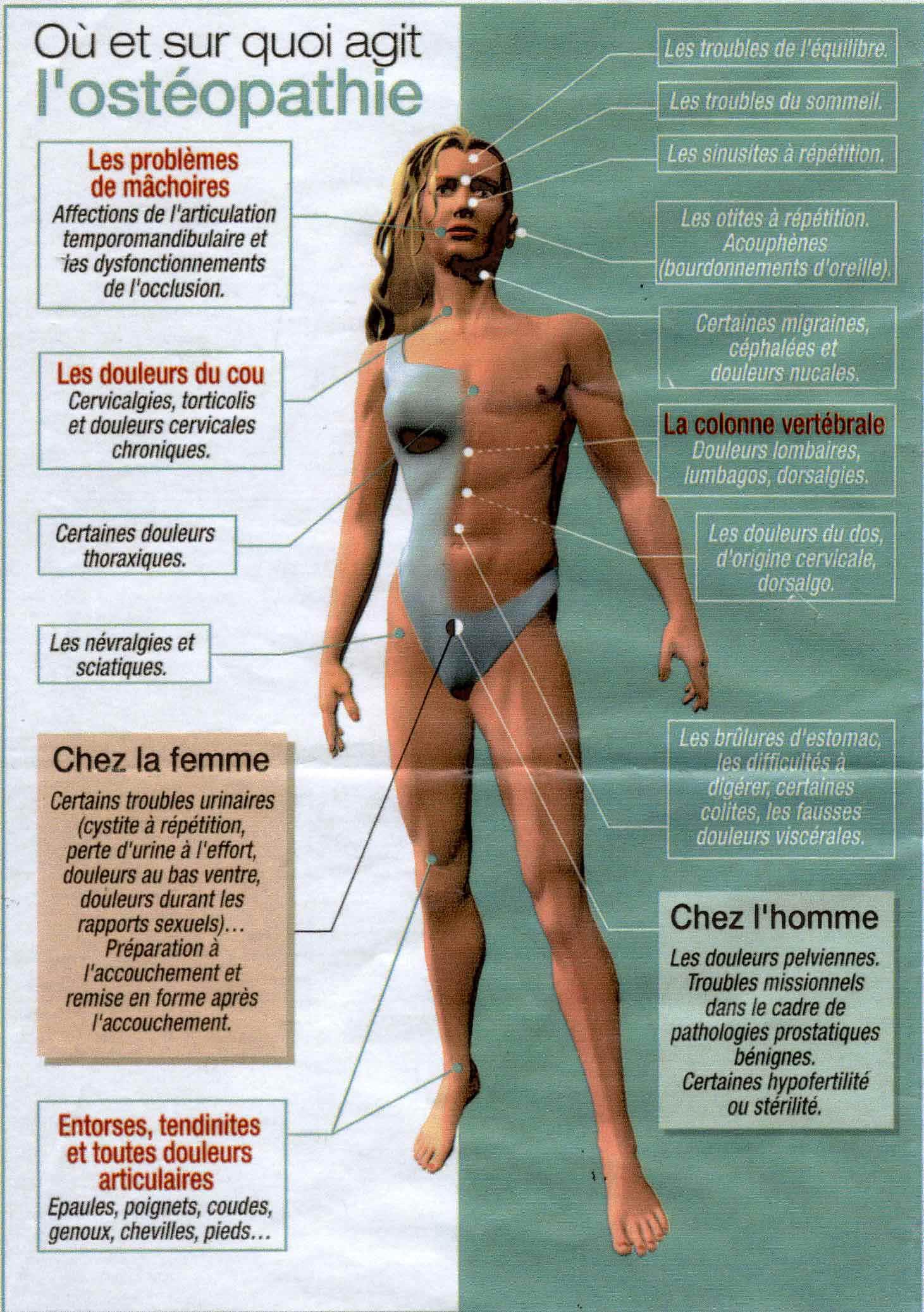LE GUILLANTON Alexandre - Ostéopathe - 7-Indications